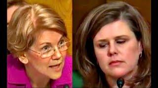 Elizabeth Warren CRUSHES BIG Pharma Executive Lori Reilly