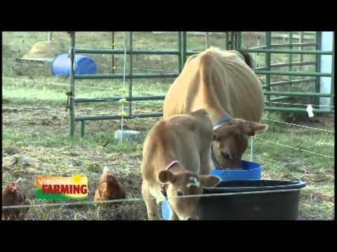 Virginia Farming - October 18, 2013