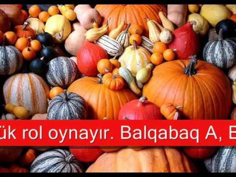 Balqabag Haqqinda Bilmediklerimiz By Created By Eka