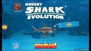 Video Hunry Shrak #1 köpekbalığı download MP3, 3GP, MP4, WEBM, AVI, FLV September 2018