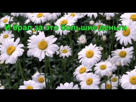 Легенды о цветах Ромашка