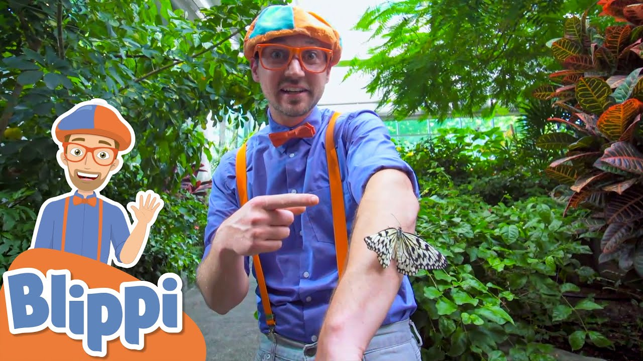 Blippi Explores the Pacific Science Center! | Learn About Animals | Educational Videos For Kids