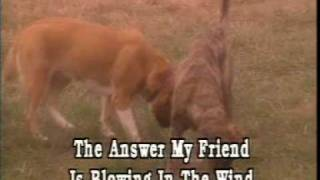 bob dylan - blowing in the wind - video - karaoke.mpg