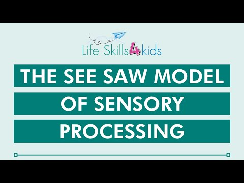 The See Saw Model of Sensory Processing