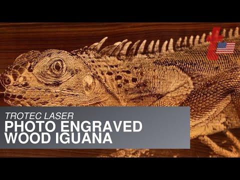 Trotec Iguana Photo Engraving On Wood