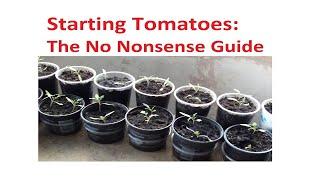 Starting Tomatoes 2021: Tнe 'No Nonsense' Guide