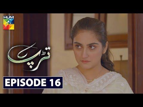 Download Tarap Episode 16 HUM TV Drama 14 June 2020