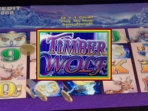 free slots timber wolf
