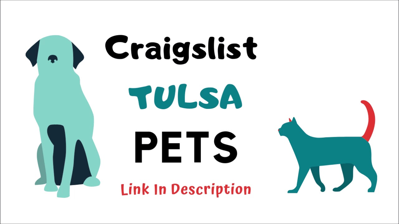 Craigslist Tulsa Pets This Is Awesome Youtube