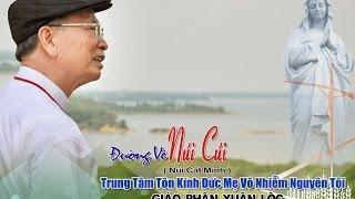 fiml DVD ĐƯỜNG VỀ NÚI CÚI ( Tư Liệu Trung Tâm Hành Hương Xuân Lộc )