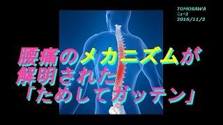 腰痛のメカニズムが解明された 2016年11月2日「ためしてガッテン」 【人...