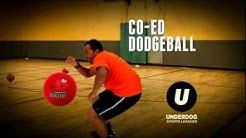 Underdog Sports Leagues - Seattle