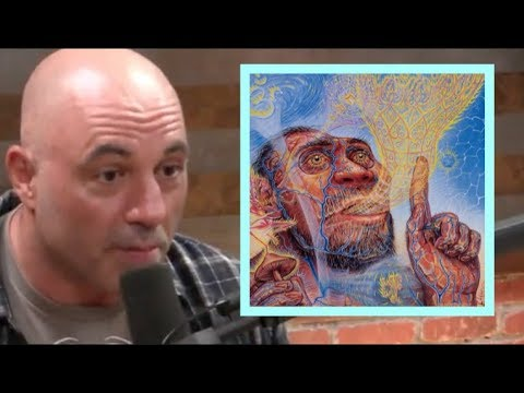 Joe Rogan - Is Stoned Ape Theory BS?