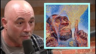Joe Rogan - Is Stoned Ape Theory BS?