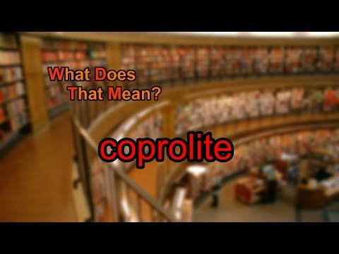 What does coprolite mean?