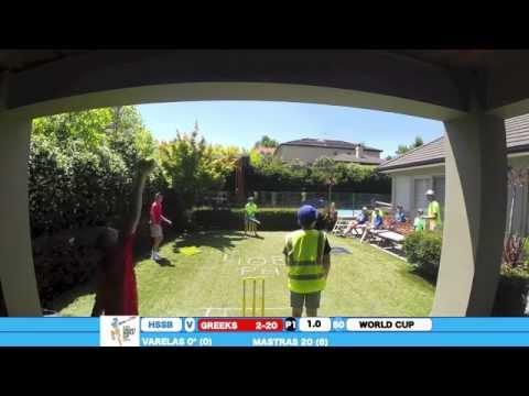 Backyard Cricket World Cup  Game