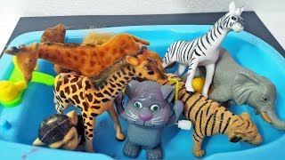 Learn Wild Zoo Animals Names For Children With Real Toys | Lots Of Safari Animals Toy Video For Kids