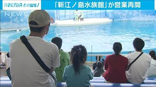 新江ノ島水族館が再開 イルカショーなど一部休止も(20/05/31)