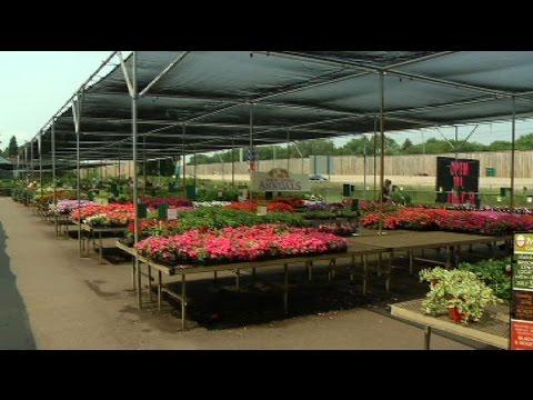malmborg s garden center closing july 5 youtube