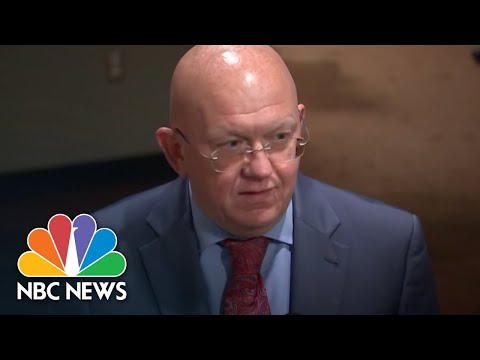 Russian Ambassador To The United Nations 'Regrets' Nikki Haley's Departure | NBC News