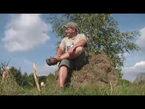"""""""Гнёздово - это я"""" Видео-клип на знаковую песню. 2011 г."""