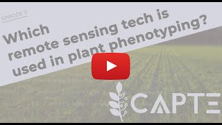 Which remote sensing technology is used for plant phenotyping ?