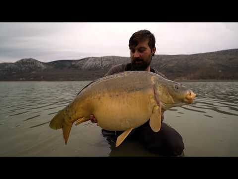 Carp fishing - Mirror Desire by  Nomad By Fate
