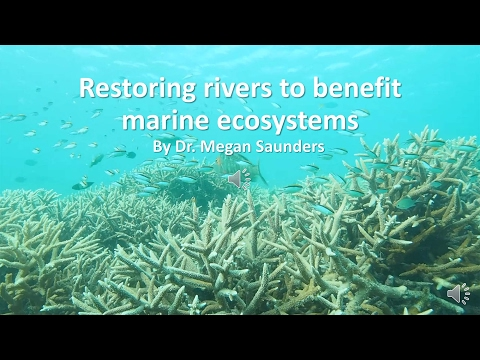 Restoring Rivers to Benefit Marine Environments