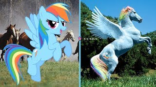my-little-pony-in-real-life-mlp-real-life-2019-top-stars