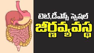 TET & DSC Biology   digestive system   TELUGU