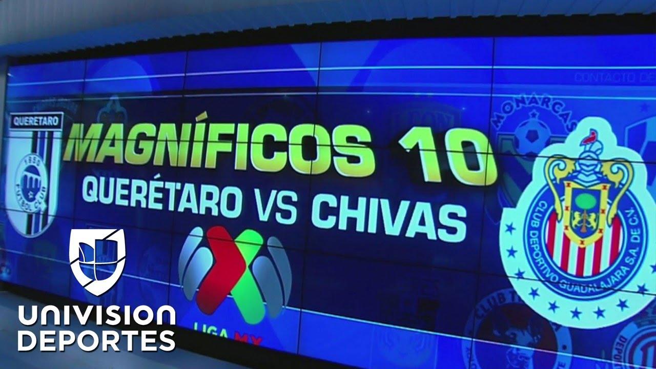 Gallos y Necaxa, los alquimistas de la liguilla en la Liga MX