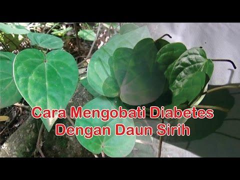 """Obat Diabetes Herbal : Cara Alami Mengobati Diabetes Dengan """"Manfaat Daun Sirih"""""""