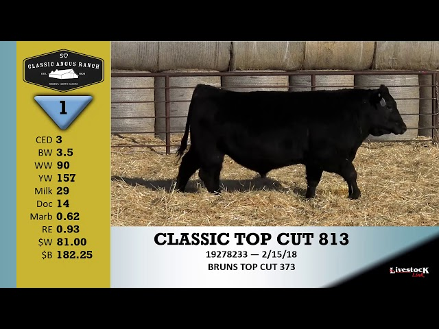 Classic Angus Ranch Lot 1