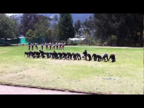 Coreografia SEXTOS 2013 Colegio Becquerel