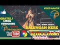 NEW PALLAPA LIVE ~ BALUNGAN KERE KOPLO - VOC. WIWIK SAGITA - NEW PALLAPA LIVE CURUG SEWU KENDAL