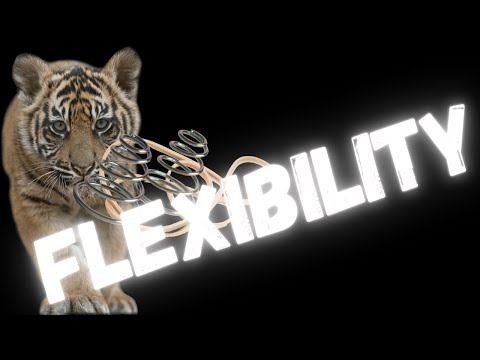 obese-to-beast-after-40-ep.8-|-flexibility-|