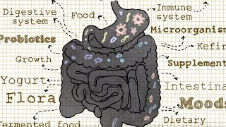 Everything You Need to Know About Probiotics (And Prebiotics!)