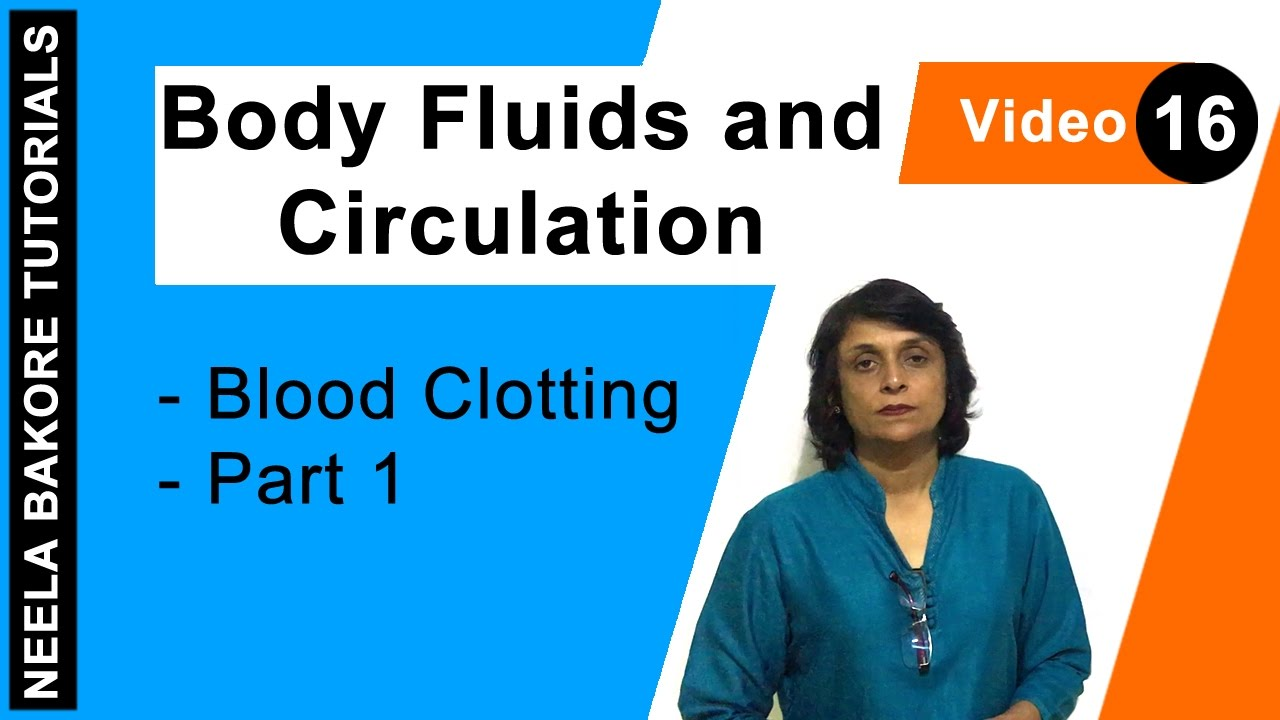 science study notes fluids