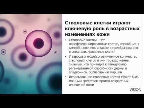 Стволовые клетки PhytoCellTec™ nunatak® в косметике Vision SkinCare
