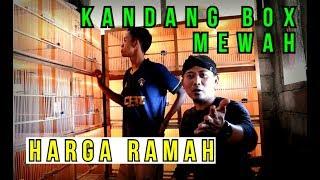 Riview Kandang Box Kenari
