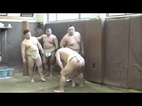 近畿大学クラブ紹介|体育会-相撲部