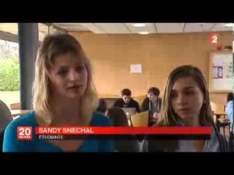 Dossier: Les grandes écoles de commerces inabordables?  JT France 2