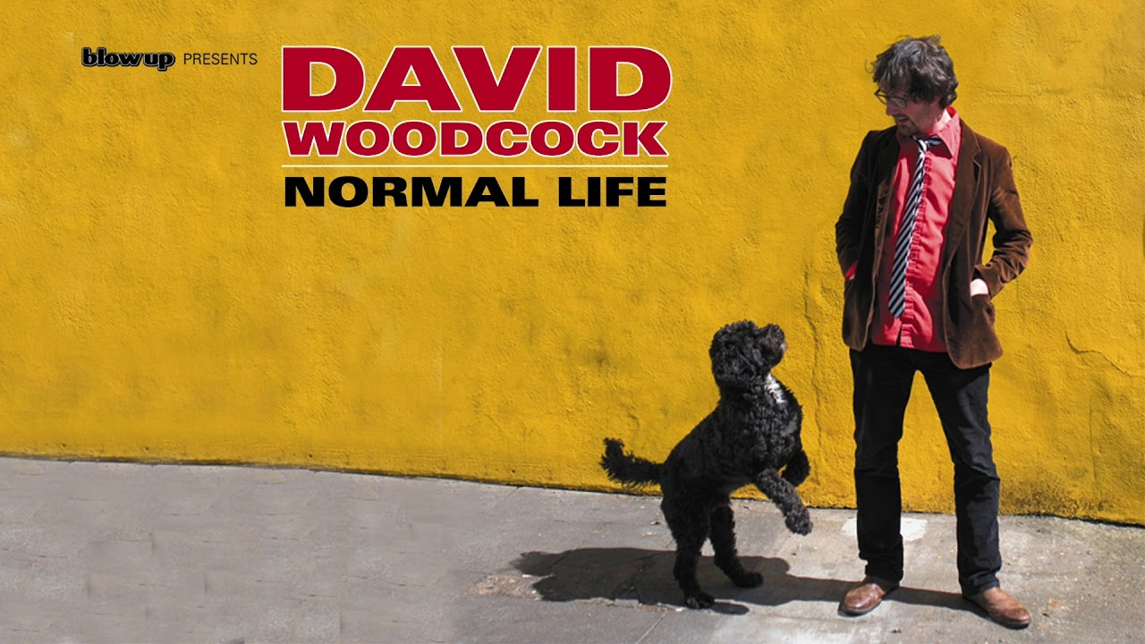 David Woodcock 'Don't Hold My Hand' [Official Audio] - from 'Normal Life' (Blow Up)