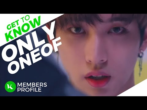 OnlyOneOf (온리원오브) Members Profile (Birth Names, Birth Dates, Positions etc..) [Get To Know K-Pop]
