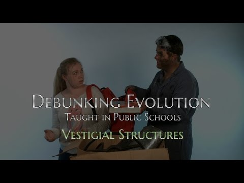 Debunking Evolution - Vestigial Structures (Lesson 3b)