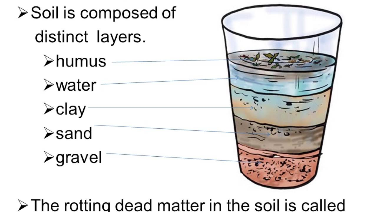 Chapter 9 soil youtube for What is soil made out of