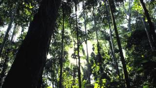 Bolivia: My Spanish speaking country and the environment