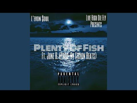 Plenty Of Fish (P.O.F)
