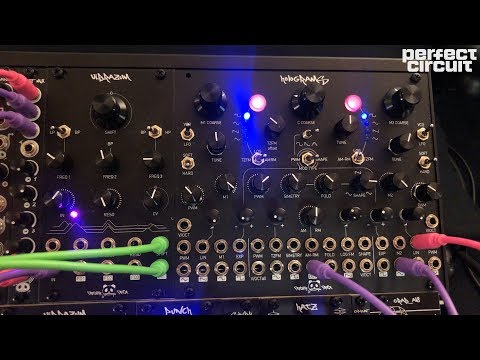 Patching Panda Holograms & Vibrazum Jam SuperBooth 2019