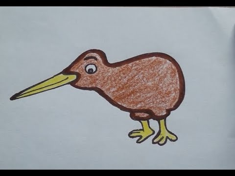Download Art Lesson 83 How To Draw Cartoon Kiwi Bird Step By Step